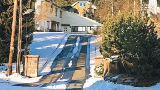 Противостояние зиме