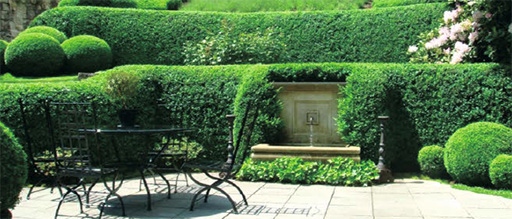 Преображение старого сада